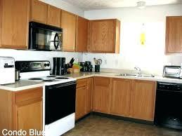 building a dishwasher cabinet dishwashers that accept cabinet panels dishwasher cabinet panel over