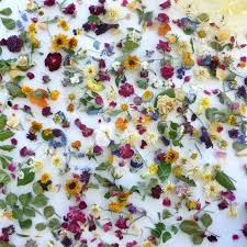 Bulk Wedding Flowers Bulk Petal Confetti Dried Flower Confetti Wedding Decorations