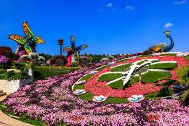 dubai uae january 5 2017 dubai miracle garden flower house