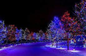 winter holiday merry christmas happy new year nature snow street