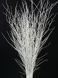 decorative coloured birch twigs and branches white 90cm s 25
