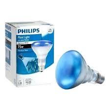 120 watt halogen br40 flood light bulb philips 120 watt agro plant light br40 flood light bulb clear