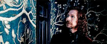 my fandom imagines imagine while sirius is looking at the family