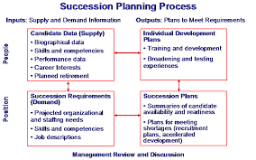 hr development plan template succession planning mcconnell consulting inc