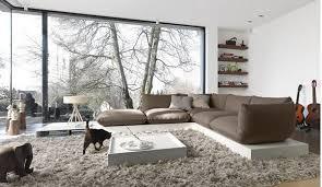 Modern Living Room Rug Modern Living Room Rugs For Motivate Iagitos