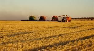 farm business management australian association of agricultural