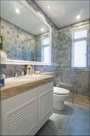 bathroom jk bathroom dazzling renovations breathtaking gold