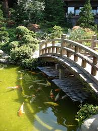 Backyard Pond Landscaping Ideas Japanese Zen Gardens