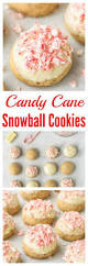candy cane snowball cookies best christmas cookie recipe jpg