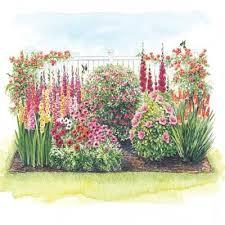 Plant Flower Garden - best 25 hummingbird garden ideas on pinterest hummingbird