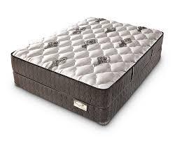 doctors choice plush mattress denver mattress