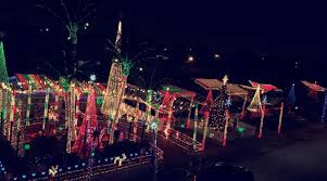 8 places in south florida to see holiday light displays miami herald