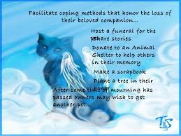 pet bereavement pet bereavement
