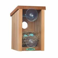duncraft duncraft 1558 window view bird house