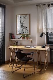 best indoor apartment plant low light maintenance loversiq