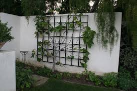 Ideas For Metal Garden Trellis Design Garden Metalwork Lasting Trellis