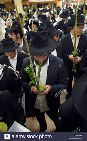 prayers for sukkot a of religious men praying on sukkot with the in