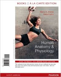 Human Anatomy Physiology Laboratory Manual Pdf Human Anatomy U0026 Physiology Edition 9 Page 2 Inspiring Human