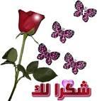 خلفيات حديقه الحب الورديه للاستديوهات