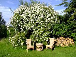 Ideen Aus Holz Fur Den Garten Garten Sitzecke Gestalten Ideen Für Kleine U0026 Große Gärten