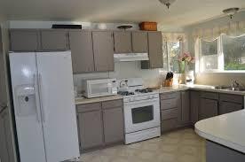 Refinish Laminate Kitchen Cabinets Painting Laminate Kitchen Cabinets Black