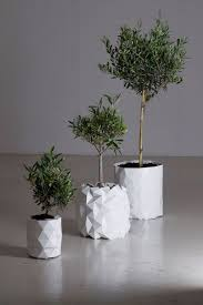 ideas charming modern planters for contemporary outdoor potted