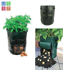 Patio Potato Planters Potato Planter Ebay
