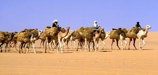 hippalos hazardous journeys by camel and caravan u2013 part ii