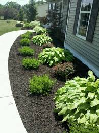 Bushes For Landscaping Charming Bushes For Landscaping Ideas About Foundation Planting On