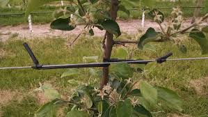 agricultural tree ties flexible training tubing that will