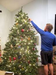 finding sunday oh christmas tree