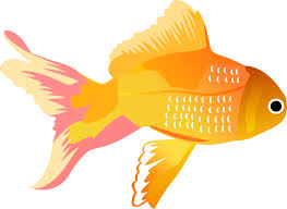 free vector fish icons free vector 4vector