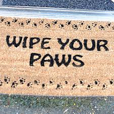 Wipe Your Paws Dog Doormat Tips On Fighting Bacteria For You And Your Dog