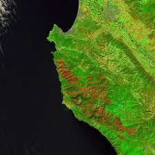 California Wildfire Cat by California U0027s Wildfire Woes Rage On Imageo