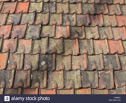 Roof Tile Colors Roof Tiles Made From Clay In Varying Colors With Lichen And