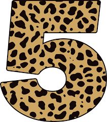agm archives cheetah conservation fund canada