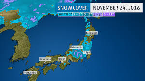 November Tokyo by Snow Falls In Tokyo For The First Time In November Since 1962