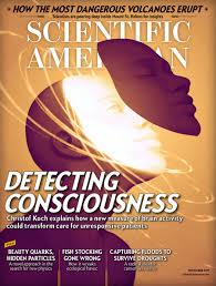 how to make a consciousness meter scientific american
