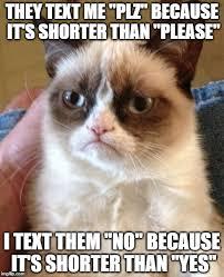 Plz Meme - grumpy cat meme imgflip