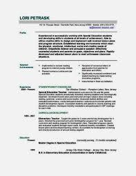 Kindergarten Teacher Resume Example by Education Consultant Resume