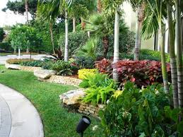 Tropical Landscape Design by Wow What A Lush Landscape I Love It Florida Landscaping Tampa