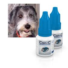 Temporary Blindness In Dogs Can C Dog Testimonials