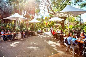 Sydney Botanic Gardens Restaurant Restaurants With A View Sydney Hcs
