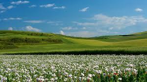 imagenes lindas naturaleza imagenes de naturaleza lindas para pantalla hd 2 fondosmovil net
