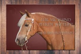 pferde spr che individuelles wandschild 3 mit spruch und bild deinem pferd