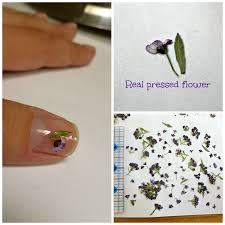 nail art supplies dried flowers manicure resin jewelry real