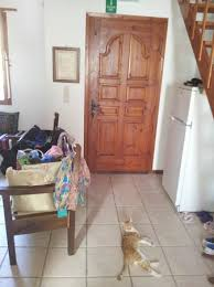 chambre douillette chambre douillette picture of s house douliana