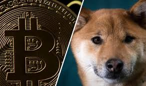 Dogecoin Meme - dogecoin cryptocurrency goes through the roof despite being set up