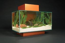 Fluval 125 Cabinet Amazon Com Fluval Edge Aquarium Set Burnt Orange 6 Gallon