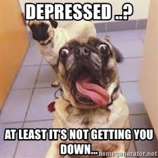 Depressed Pug Meme - insane pug meme generator